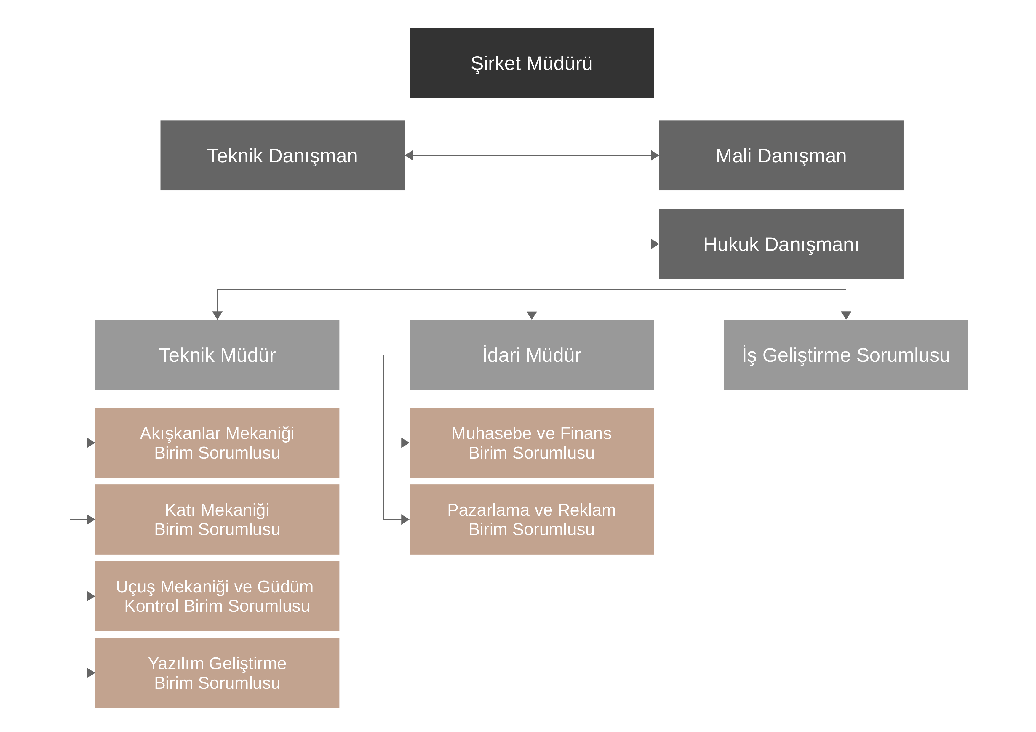organizasyon_yapisi